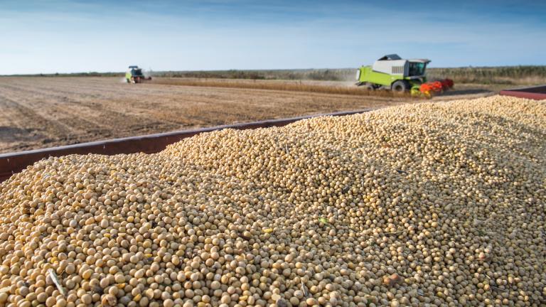 EUA – Mais exportações, menos estoques de milho e soja