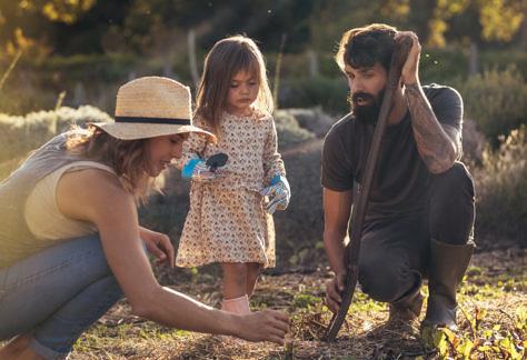Ebook gratuito é lançado para agricultura familiar
