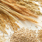 Queda nos estoques de grãos dos EUA