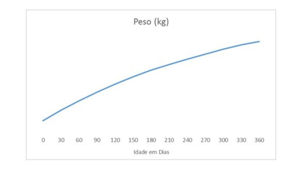 graf 1 ok