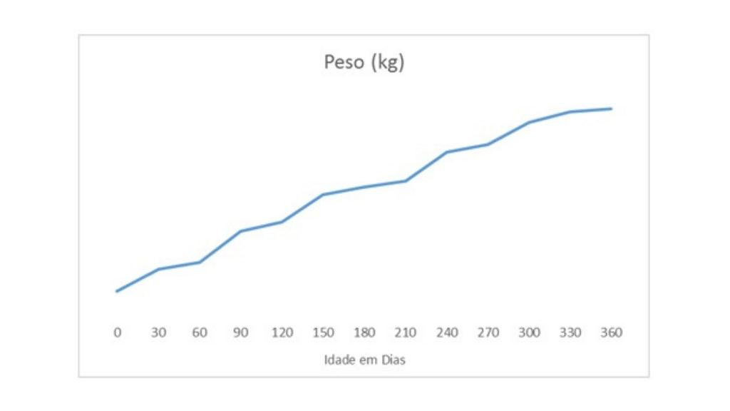 graf 2 ok