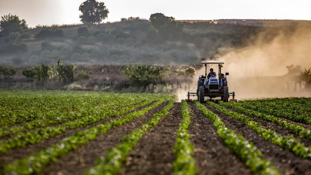 a resiliencia da agricultura