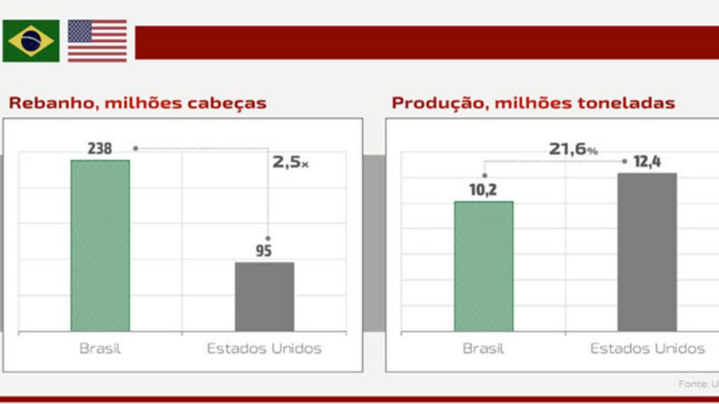 analise da eficiencia de producao bovina