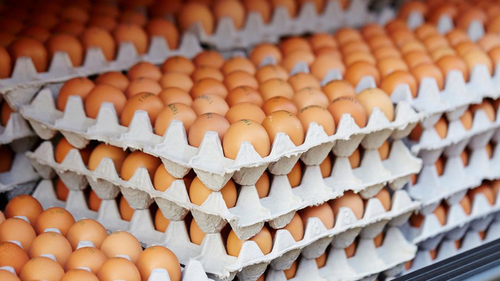 e a batalha continua no mercado de ovos