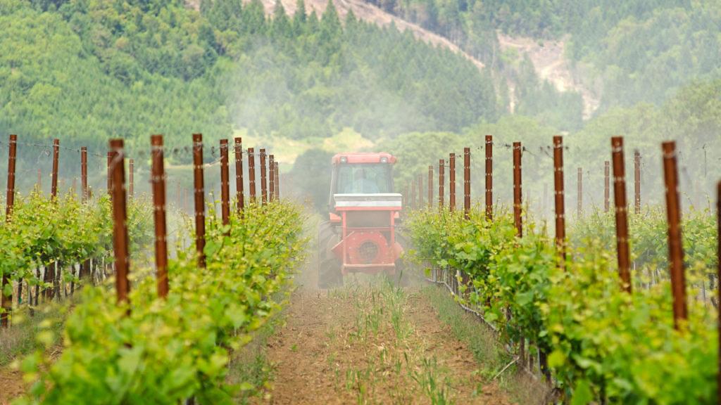 enxofre e sua importancia para a correcao do solo na agricultura