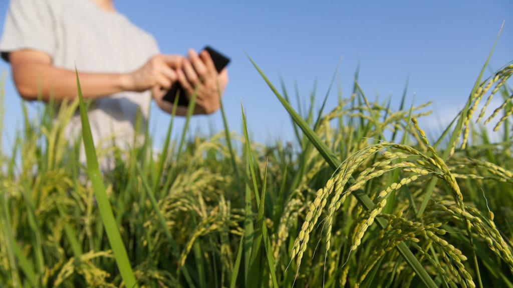 novidades e tendencias de tecnologia para o agro