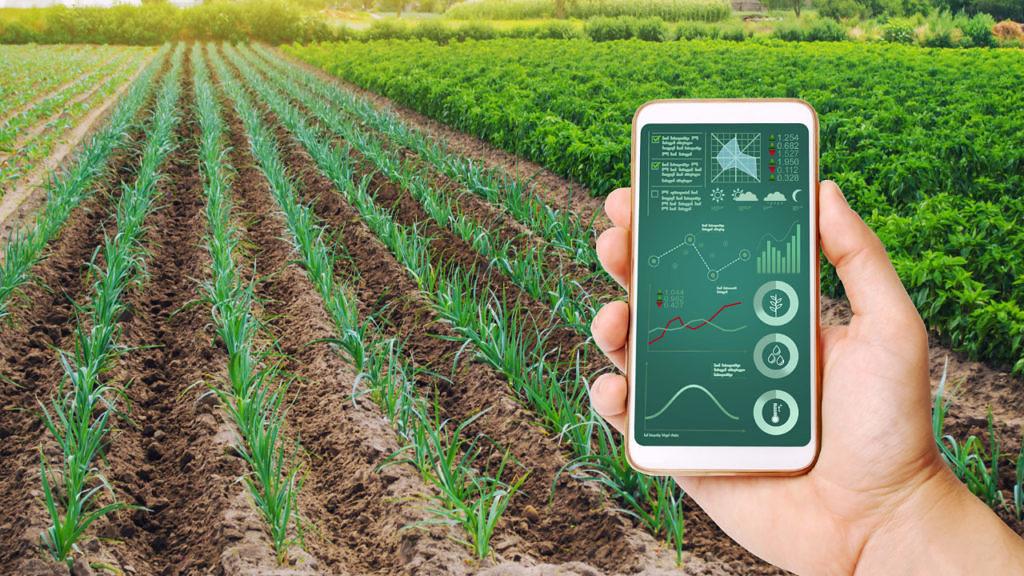 Práticas no campo agregam valor à produção do agronegócio