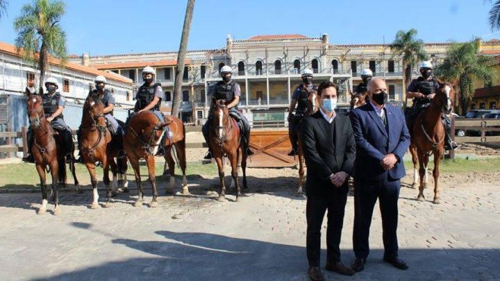 cavalos para o policiamento