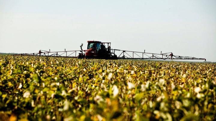 Média diária de exportação de soja do Brasil alcançou 842,9 mil toneladas até a terceira semana de maio