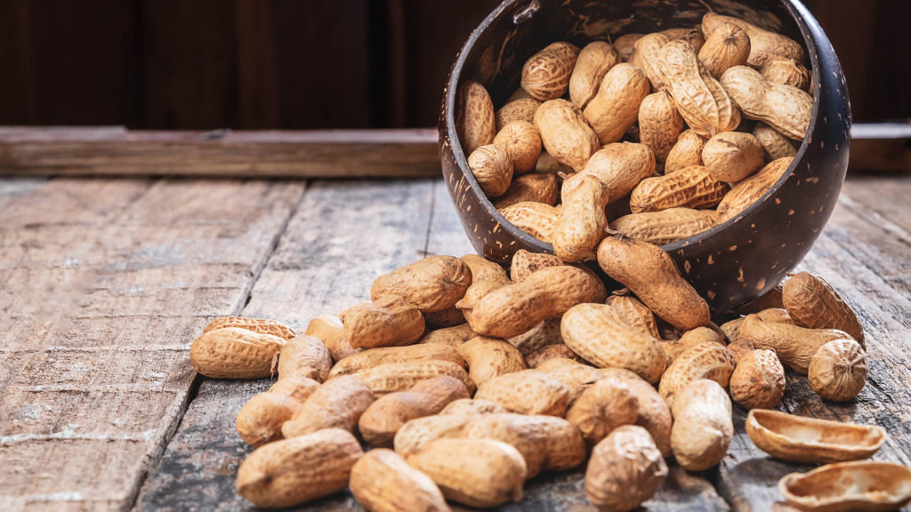 zoneamento agricola do amendoim ja esta disponivel para todos os estados