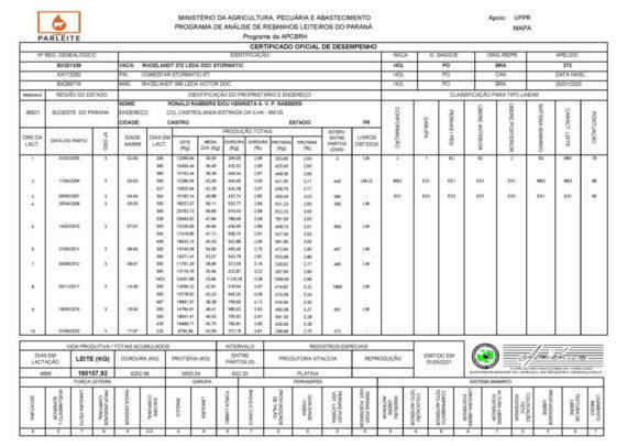 4 certificado oficial desempenho 372 1024x727 1