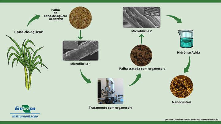 a nanocelulose na forma de nanocristais ou nanofibras da palhada da cana pode melhorar as propriedades dos materiais aumentando a resistencia mecanica