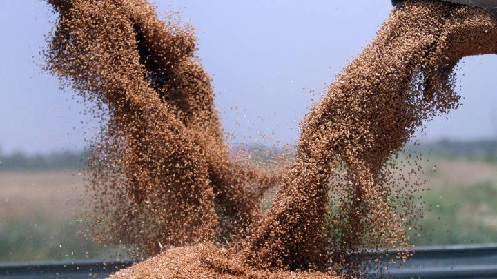 Exportações do Agro somam US$ 13,9 bilhões em maio