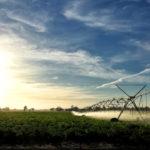 Maior visibilidade à agricultura irrigada brasileira