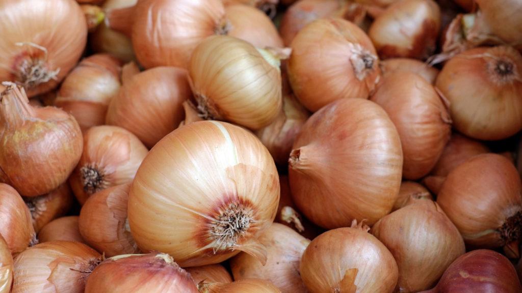 Mercado de cebola no Nordeste