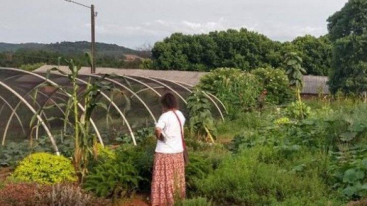 Mulheres agricultoras e o cultivo de plantas medicinais