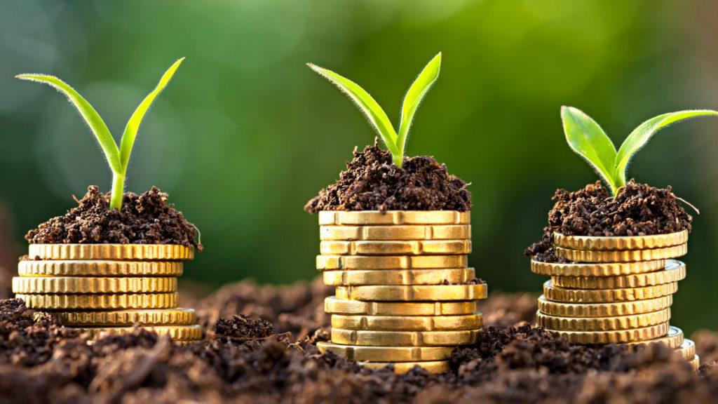 Plano Safra 20212022 ficará ainda mais verde