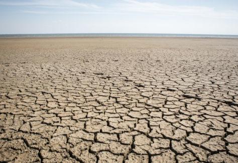 Relatório da ONU alerta para risco maior de seca neste século