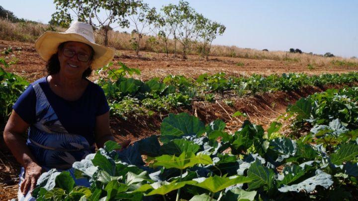 Agricultura familiar leva alimento à mesa de milhares de brasileiros