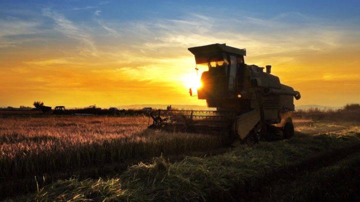 Agro é o único setor que registra alta no número de empregos