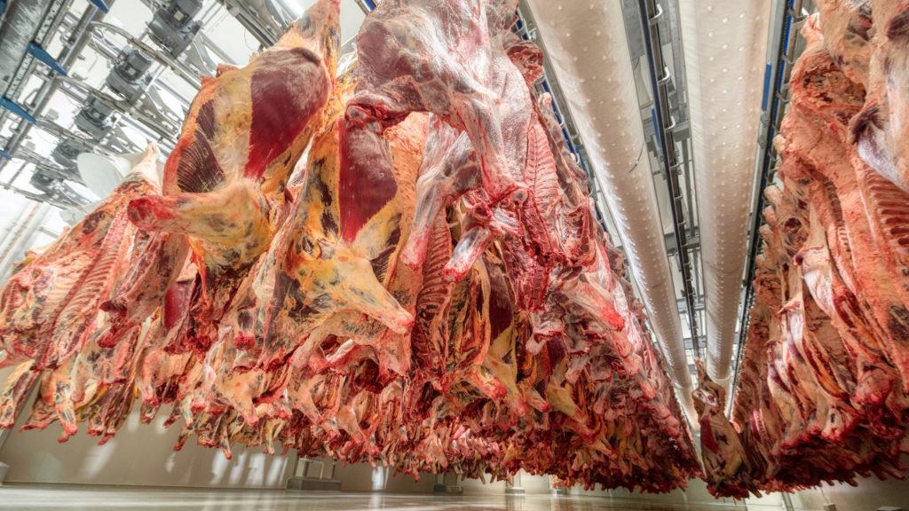 Aumentam exportações de carne bovina do Brasil aos EUA