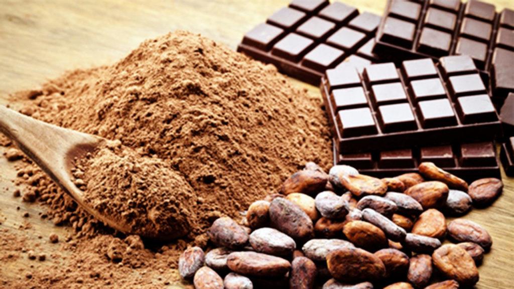 CNA e Apex-Brasil promovem capacitação com foco na exportação de cacau e chocolates
