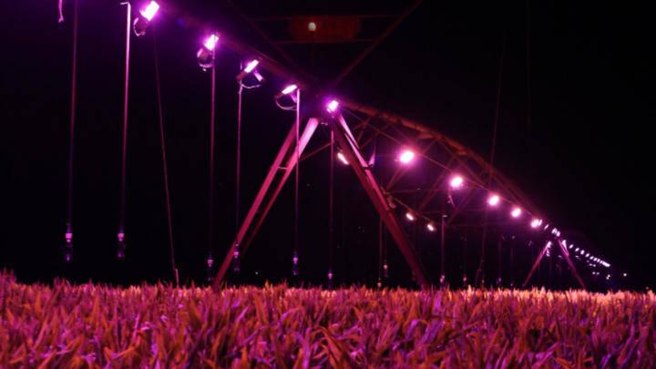 Irrigação de luz sobre a lavoura traz benefícios aos agricultores