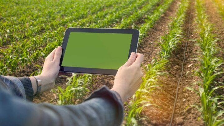 AgroGalaxy e a tecnologia evitando perdas com inadimplência