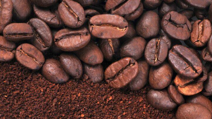 Aprovado recurso de 1,3 bilhão para atender demanda imediata do setor cafeeiro