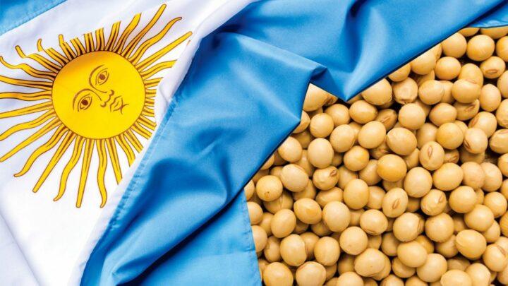 Bayer suspende negócios de sementes e biotecnologia para soja na Argentina