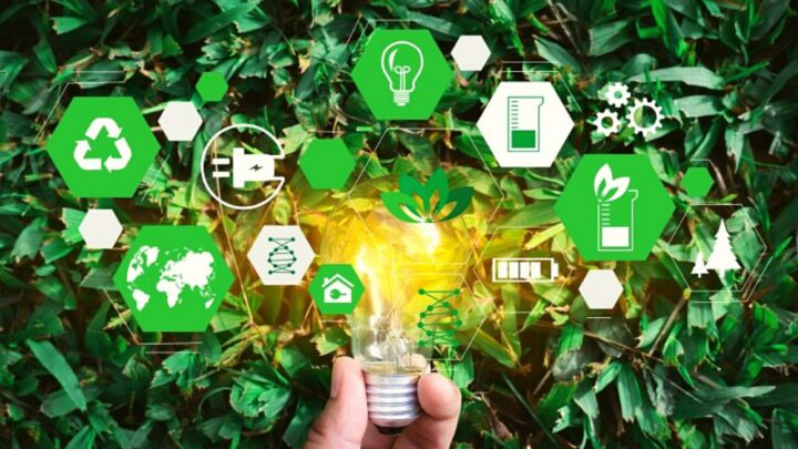 Carbotex adota modo de produção sustentável a fim de contribuir com o desenvolvimento socioeconômico brasileiro