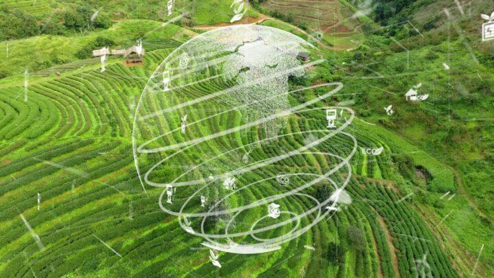 ESG no agronegócio, seus desafios e compromissos