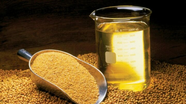 Exportação de farelo de soja é a maior em 17 anos