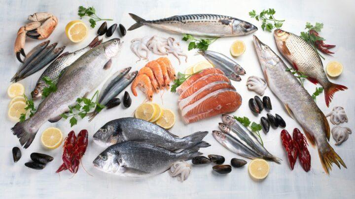 O Instituto de Pesca trabalha para incluir o pescado na Alimentação Escolar