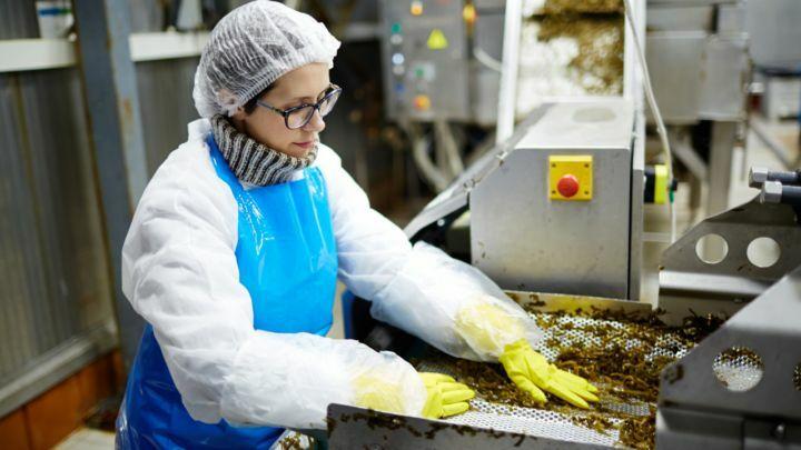 Produção de alimentos gera 151.252 empregos no 1º semestre