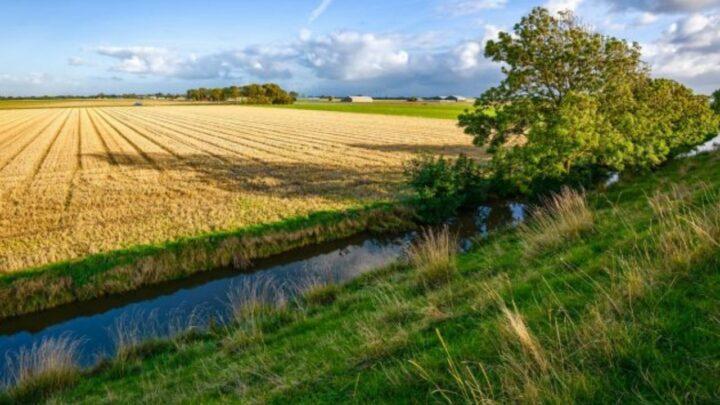 Uso da água no campo exige autorização