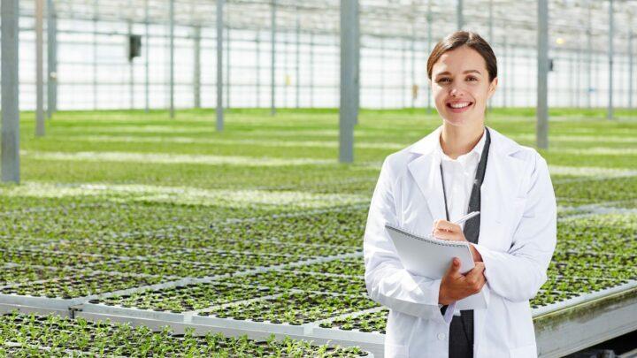 Morosidade e burocracia na inovação agropecuária