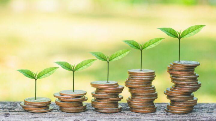 Resultados de ESG serão reportados por empresas fiscalizadas pela Comissão Valores Mobiliários