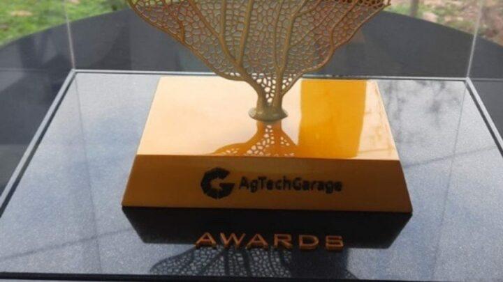 Sicredi vence prêmio de inovação no agronegócio