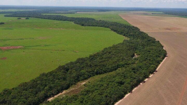 Tecnologia para cuidar de área ambiental de 98 mil ha