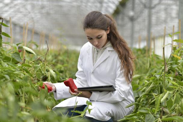 Saem projetos habilitados no programa AgroResidência