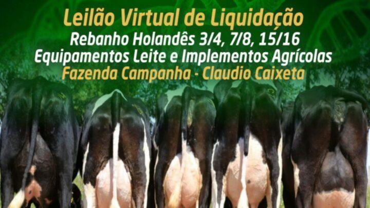 Vem aí o Leilão Virtual de Liquidação Fazenda Campanha