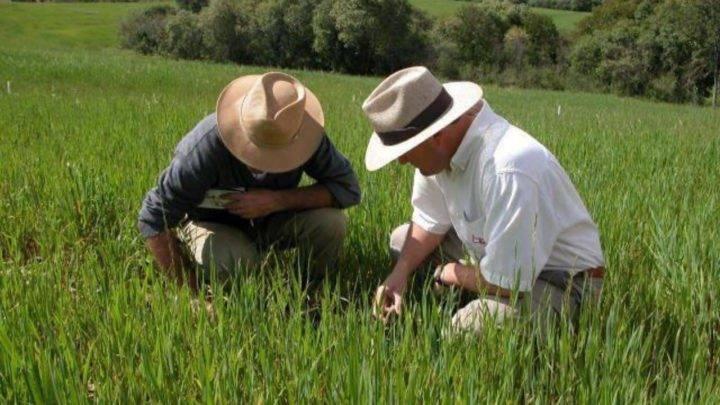 O valor do produtor agro!
